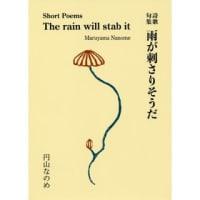 詩歌句集 『雨が刺さりそうだ』 円山なめの