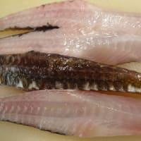 水曜定休日!明日(木)も新鮮な「お刺身」をご用意します!!刺身と手作り干物の専門店「発寒かねしげ鮮魚店」。