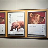 「木彫り熊の申し子 藤戸竹喜」展/東京ステーションギャラリー