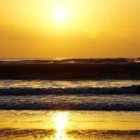 渚で返す波