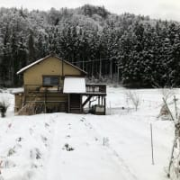 オンライン自然菜園セミナー『自家採種入門』と冬仕事