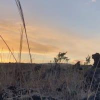 裏砂漠の夕景