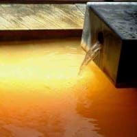 道の駅・上品の郷「ふたごの湯」