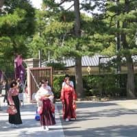 日本のおみくじが外国人観光客に人気 静かな開運ブーム