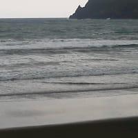 ウミガメの来る浜に防波堤が建てられる