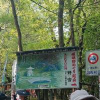 #0055 -'19. 嵐山(嵯峨野の竹林の小径)