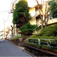 【教室】松戸 三線教室お稽古‼️^_^