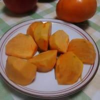 今年の次郎柿は、大粒で甘い!山の家で柿狩り・・・