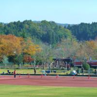 角田市阿武隈リバーサイドマラソンが2014年11月2日開催