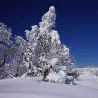 氷ノ山レポUP
