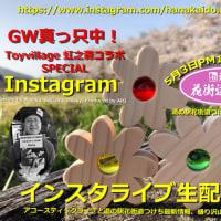 道の駅花街道つけち&「Toyvillage虹之森」コラボ!インスタライブ !