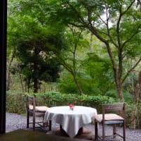 森の中の喫茶店(-5.5㎏)407日目