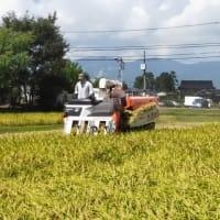 2020なんと営農ブログ
