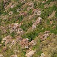 3,000回登頂 錫杖ケ岳