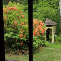 Through the windows
