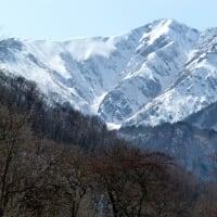 早春の安曇野・・・大町市黒沢高原・・・鹿島槍ヶ岳スキー場からアルプスの風景