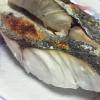 目鯛(めだい)