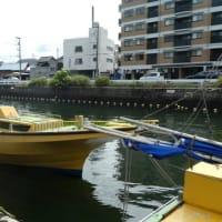 『餌木マダコ釣り』@東京湾