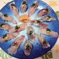 熟成カイワリの握り寿司