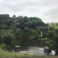 晩夏の松濤園一般公開