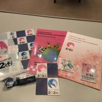 京都コングレスに参加(3)人権擁護委員サイドイベント 2021.3.10