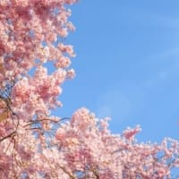 【3月限定!】人生を本氣で好転させる!潜在意識から変わる!《多次元ヒプノセラピー》キャンペーン♪