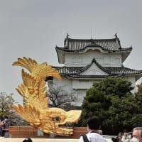 *村ちゃんの歴史ぶらり旅!     *名古屋城天守金シャチ展!