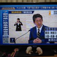 7都府県に緊急事態宣言