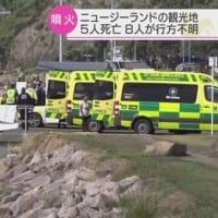 "【nhk news web】    12月10日06:05分、""""NZで火山噴火 5人死亡8人行方不明 観光地の無人島"""""