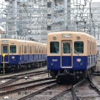 阪神 尼崎(2020.2.16) 赤胴車 7990、青胴車 5001 丘の上留置車並び