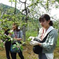 北信りんごの里 田畑の楽校2019A・B