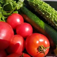 蓼科山荘 双子池ヒュッテ 山小屋のお食事に手作りの無農薬野菜