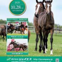 【ジェイエス・繁殖馬セール2019(秋季)】の「ブラックタイプ」が公開!