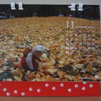 〔2020ミモロ京都暮らしカレンダー」発売スタート。特製正絹足型紙入れ「ミモロのお散歩」も登場