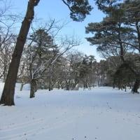 Walk in Hirokoji, Nakadobashi, Senshu Park, Akitaekimae on Friday morning