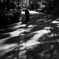 10/27 モノクロ遊び