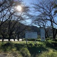 上大島キャンプ場辺り
