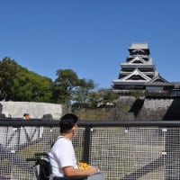 いよいよ解禁!熊本城復興見学通路に行ってきました!