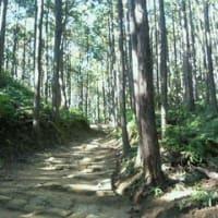 熊野にて 2