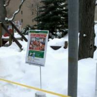 雪まつりのユビキタス実験