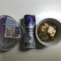 マイブーム もつ煮&缶チューハイ 2020