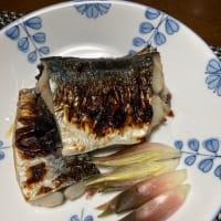 サゴシの塩麹焼きとあさりのお味噌汁と今年初の梨