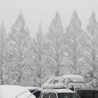 雪・雪・雪…