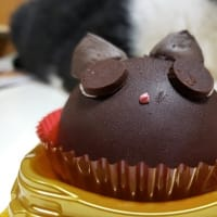 セブンイレブン『黒猫ザッハトルテ』は黒いくぅちゃん?の巻~