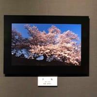●デジタル一眼レフ・福島クラス教室展レポ【中之島】