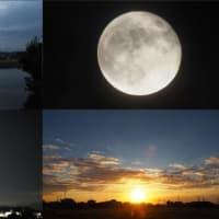 2021年10月22日 昨夕,昨夜,今朝の風景  3091レ DE10-1164,サンライズ出雲,56レ 福山通運,67レ EF66-129
