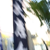 【今更感満載】秋祭り画像【zipでよこせ】