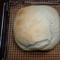 中学生にピロリ菌検査 自治体の取り組み増加/国産小麦とフランス産バターでパンを焼いた