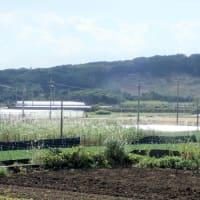 菅首相、遺骨混りの南部の土砂使用を認める!--- 沖縄県は「魂魄の塔」横の土砂採取地の開発届出に対して、自然公園法に基づき中止の指示を! /// 遺骨収集は国の責任、業者任せは許されない(追記あり)