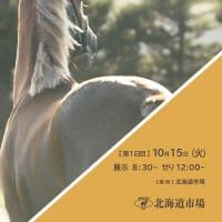 【オータムセール2019(Autumn Sale、1歳)】の「ブラックタイプ」が公開!